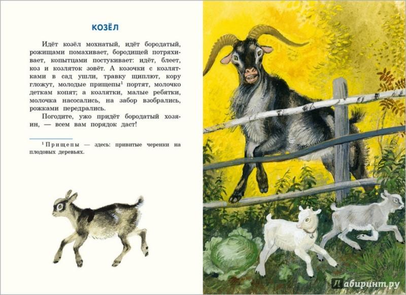 Иллюстрация к сказке Бишка
