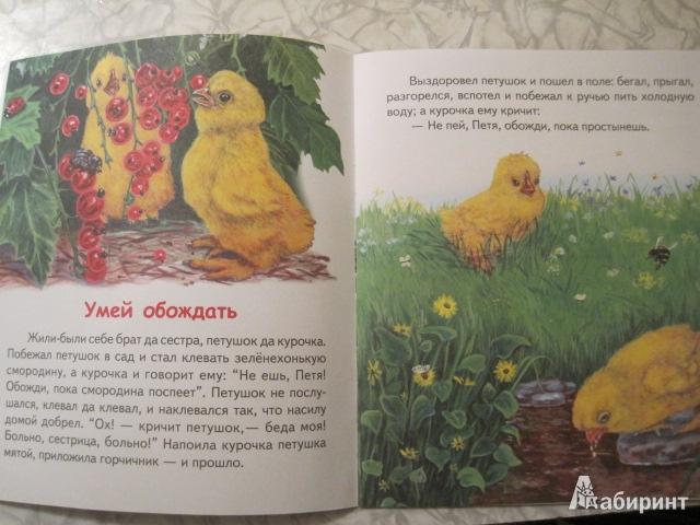 Иллюстрация к сказке Лиса и гуси