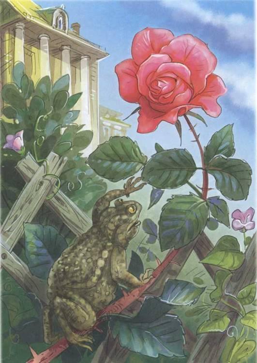 Иллюстрация к сказке О жабе и розе